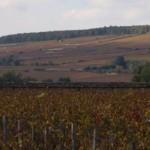 Landskap i Côte d'Or